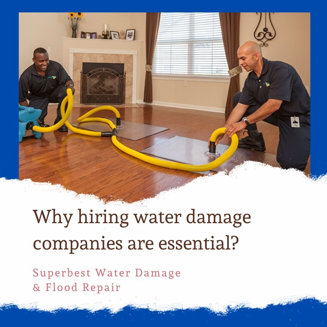 Why hiring water damage companies are essential?