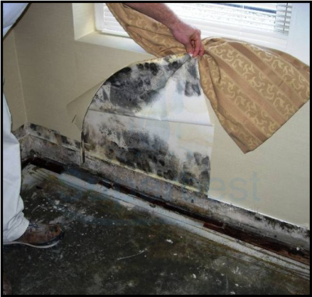 49 las vegas water damage restoration company repairs removal emergency same day cleanup 4
