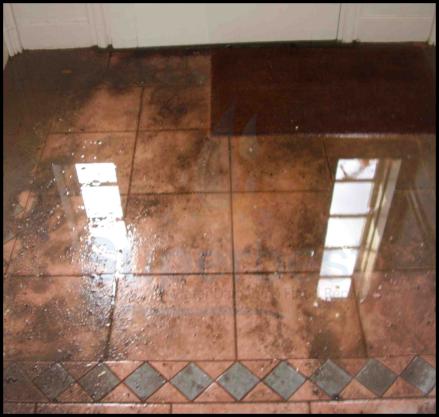 28 las vegas water damage restoration company repairs removal Property restoration Services 2