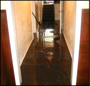 28 las vegas water damage restoration company repairs removal Property restoration Services 3
