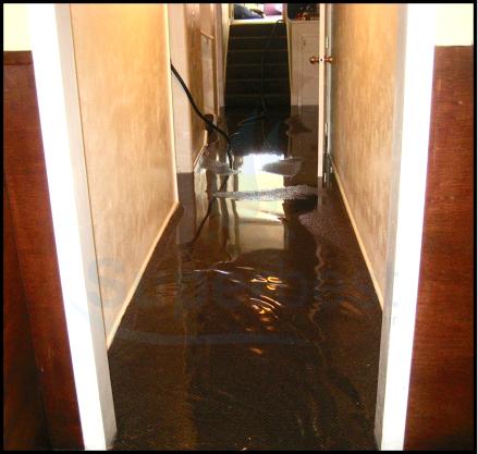 28 las vegas water damage restoration company repairs removal Property restoration Services 3