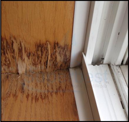 38 las vegas water damage restoration company repairs removal Emergency water damage 2