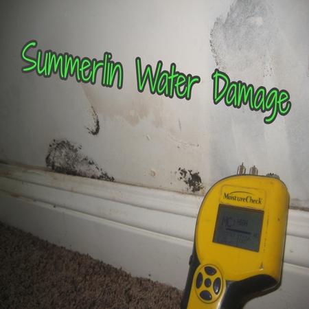 Summerlin Water Damage
