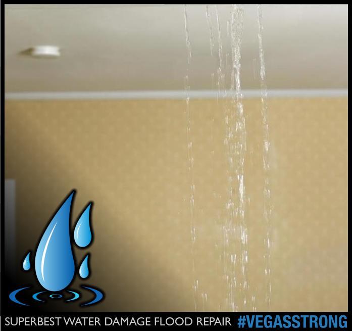 WATER DAMAGE LAS VEGAS 103