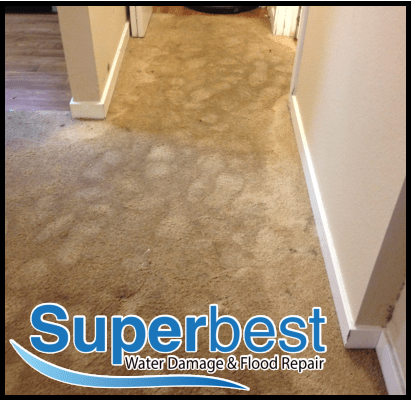 water damage las vegas restoration company Superbest Flood Repair 66